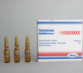 Testosteroni Enanthate Norma 250mg/amp
